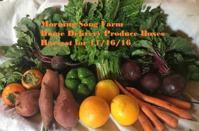 november-harvest-ticket