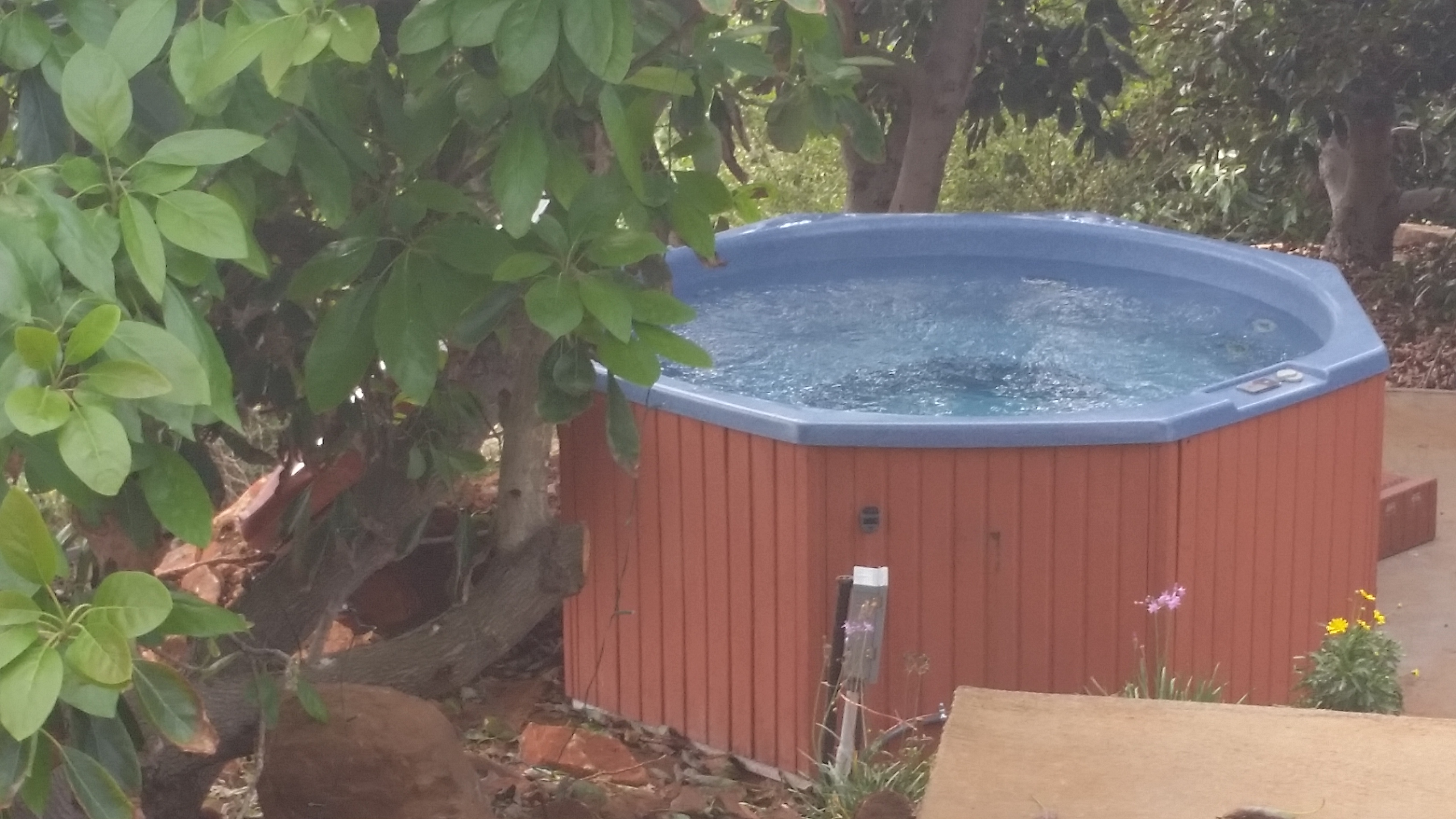 Hottub hidden in the grove of the Two Bedroom Bungalow with Hottub.